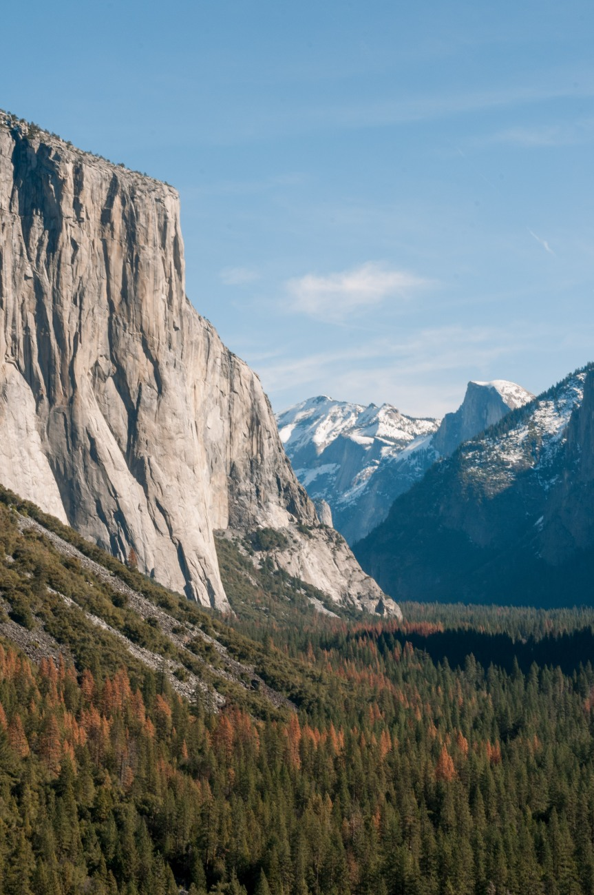 A view of Yosemite Valley in Yosemite National Park in California in the United States.  As seen from Tunnel View Look Out Point. Half Dome and El Capitan on a bright day.